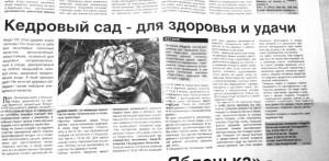 pitom_izv2s