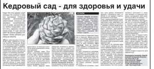 pitom_izv3s
